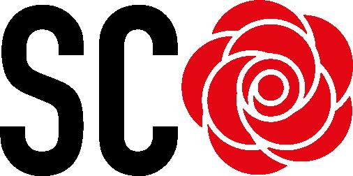 Socialist Councillors